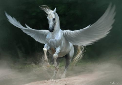 Pegasus_white_Mali